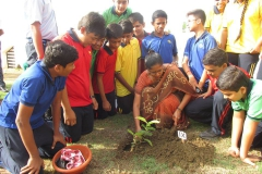"Go Green, Plant Green"", Said by Teresa House of RPS 07-07-2017 RPS"