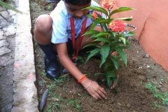 Students Planting Sapling on their Birthday. (9-08-2018) RPS